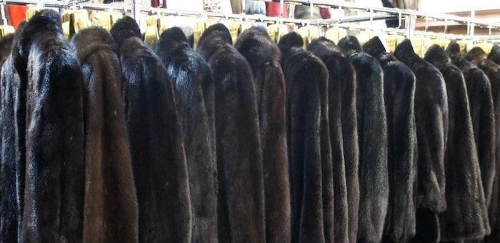 Покупая норковую шубу в «Одноклассниках», жительница Горно-Алтайска потеряла 130 тысяч
