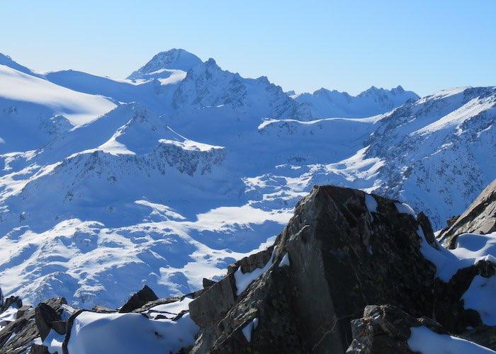 Трех снежных барсов сняли фотоловушки на Укоке
