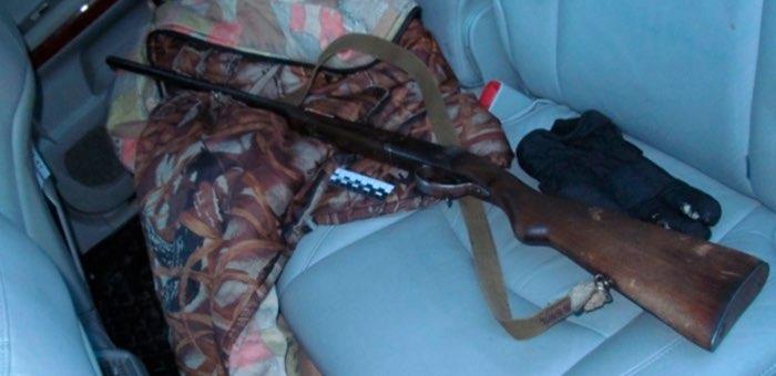 Браконьера, застрелившего косулю, задержали сотрудники ДПС