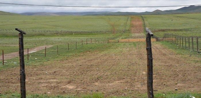 В Республике Алтай вдоль государственной границы действует карантинная полоса