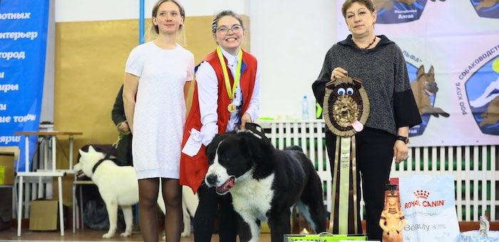 В Майме прошла выставка собак «Горные просторы»