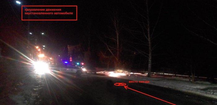 Полиция разыскивает водителя, сбившего насмерть пешехода