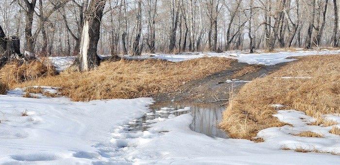 Весеннее тепло возвращается на Алтай