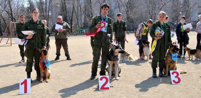25 собак приняли участие в соревнованиях по общему курсу дрессировки