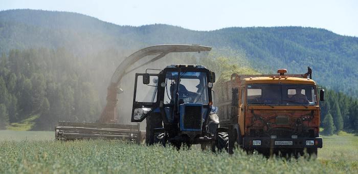 Объем господдержки сельского хозяйства в этом году составит около 600 млн рублей