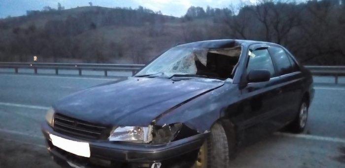 В районе аэропорта под колесами автомобиля погиб пешеход