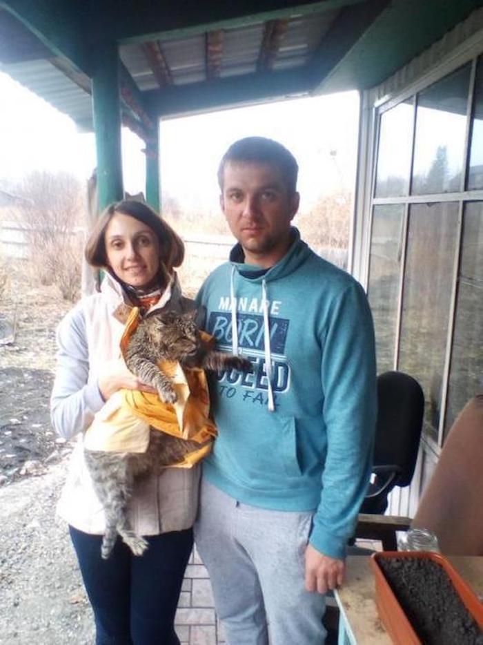 Спасенный от живодеров на турбазе кот скончался от травм в ветеринарной лечебнице