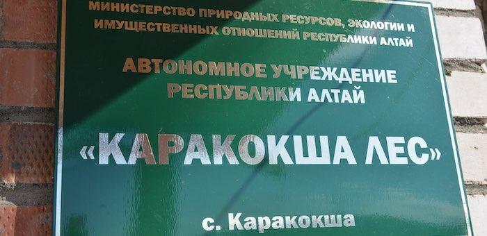 Бывший директор учреждения «Каракокша лес» обвиняется в растрате