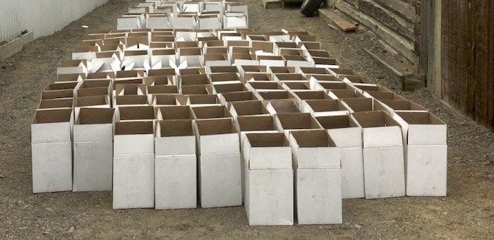 Около 3 тысяч бутылок нелегальной водки изъяли в Кош-Агаче
