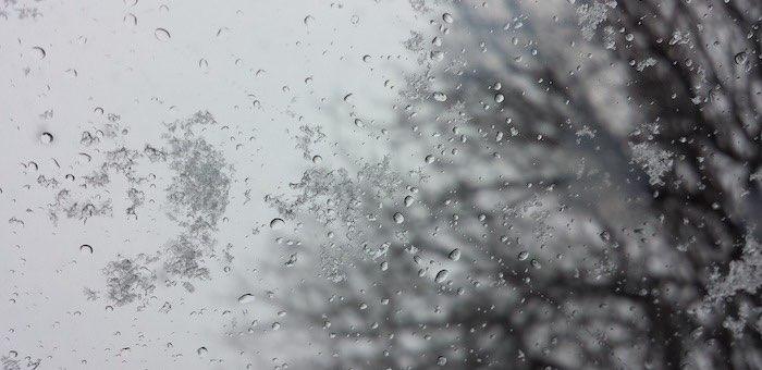 Дождь и мокрый снег ожидаются на Алтае 1 мая