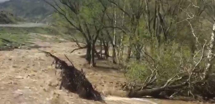 Возле Хабаровки дорожники спасают от подтопления Чуйский тракт