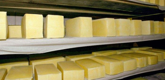 В сырах, производимых в Алтайском крае, обнаружили соли тяжелых металлов