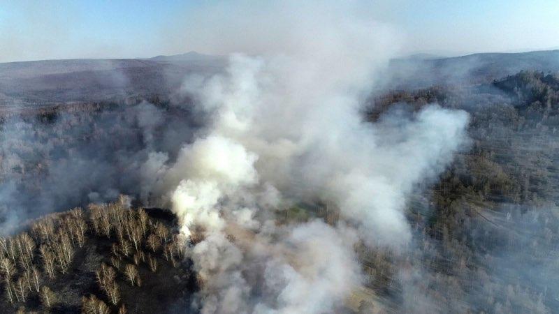 Семь травяных пожаров поблизости от населенных пунктов потушены за минувшие сутки