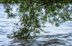 МЧС предупреждает о возможном подъеме уровня воды в реках