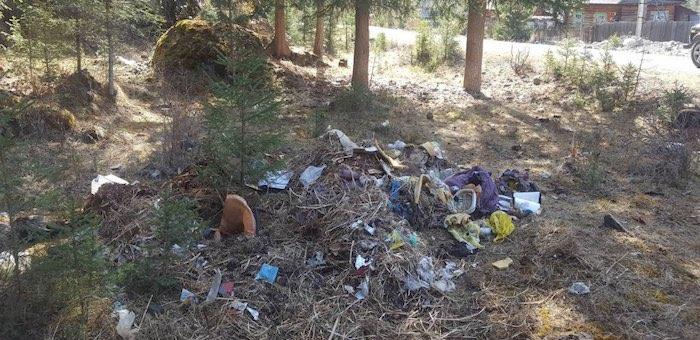 Главам районов поручили убрать несанкционированные свалки