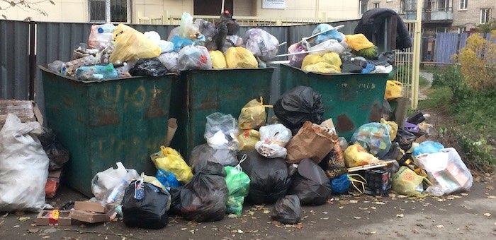 «Коммунальщик» в очередной раз оштрафовали за несвоевременный вывоз мусора