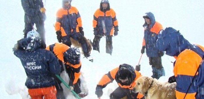 Спасатели нашли под снегом пять тел погибших альпинистов, трое опознаны