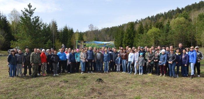 Свыше 120 человек приняли участие в посадке деревьев