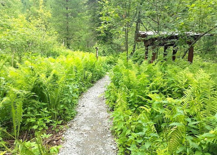 Эко-тропа «Тевенек» открылась в окрестностях Артыбаша