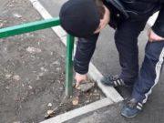 20-летний горожанин получил восемь лет строгого режима за попытку «закладки» наркотика