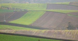 «Научные» земли в Шебалинском районе могут передать местным жителям и фермерам