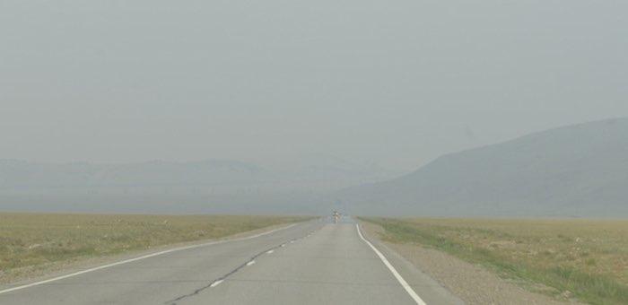 Дым от сибирских лесных пожаров дошел до Монголии
