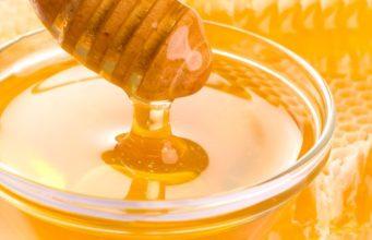 Самый вкусный алтайский мед и самую вкусную медовуху выбрали на фестивале меда