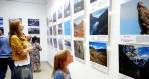 Выставка «Живая природа Алтая» открылась в Национальном музее