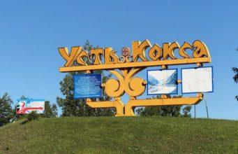 Эпидемия и политика: вспышка гепатита случилась в Усть-Коксинском районе