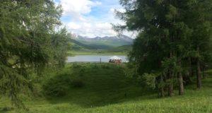Поправки в Лесной кодекс позволят развивать туризм, не навредив природе