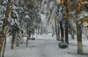 Потепление придет в Республику Алтай после морозов