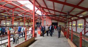 Молочная ферма открылась в Усть-Коксинском районе
