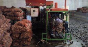 Новые овощекартофелехранилища открыли в Шебалинском районе
