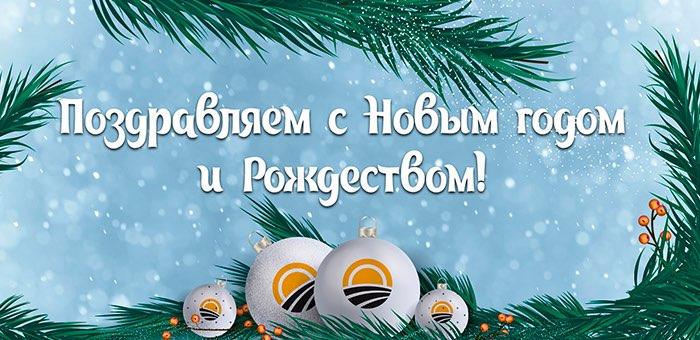 ПАРТИЯ ДЕЛА поздравляет с Новым годом!