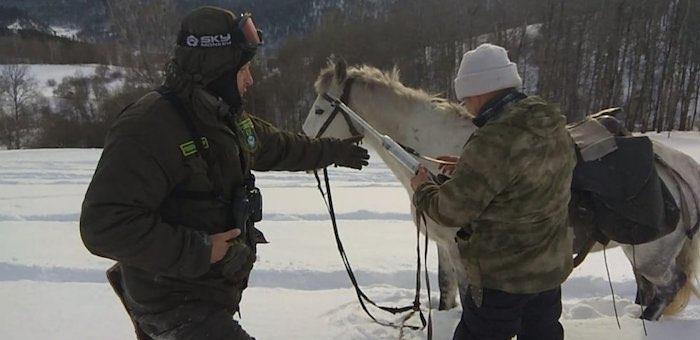 Антибраконьерские рейды прошли в Горном Алтае