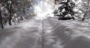 Сильный снегопад обрушился на Алтай