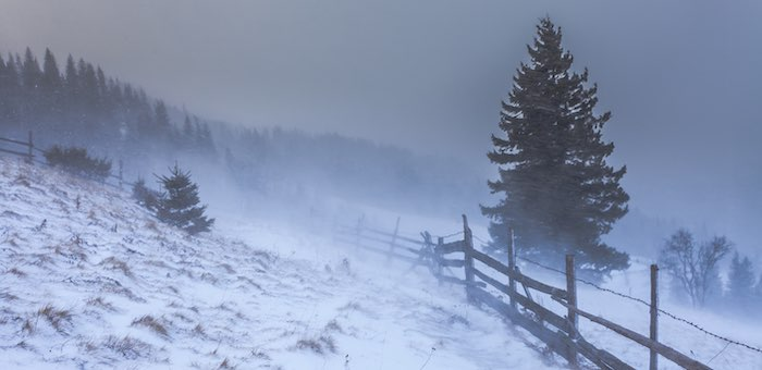 Опять штормовое: усиление ветра, снег, метели