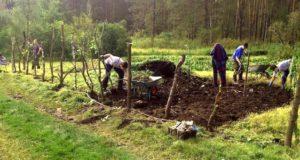 Ботанический сад приглашает волонтеров на лето