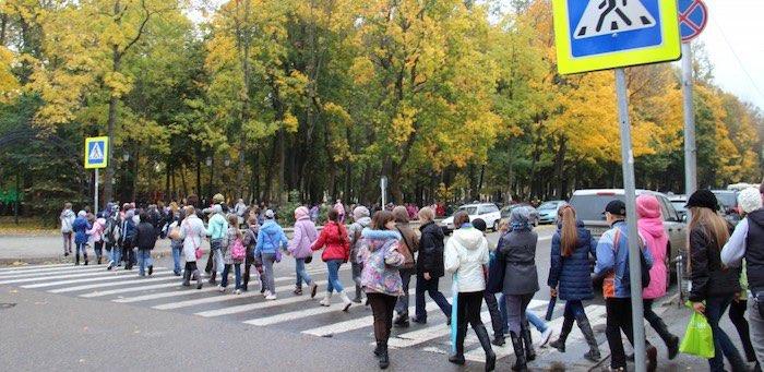 Пешеходные переходы возле школ и детских садов завершат обустраивать в 2020 году