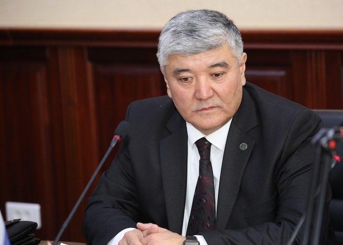 Горно-Алтайск посетил консул Киргизии