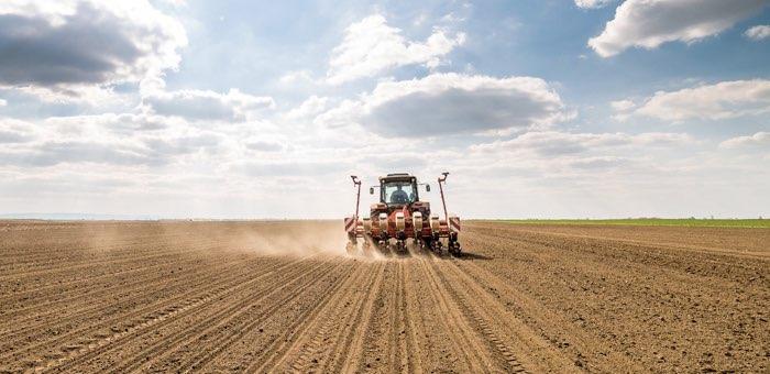 Россельхозбанк на Алтае нарастил кредитование сезонных работ