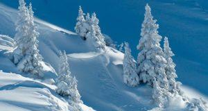 Снегомерный маршрут на Семинский перевал подтвердил высокие запасы снега в горах