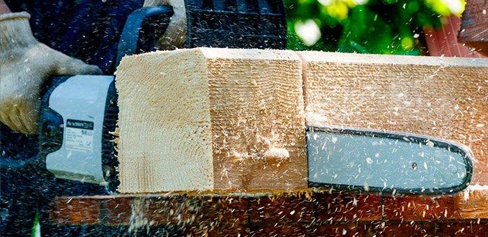 «Под видом мелиоративных работ заготавливали деловую древесину»