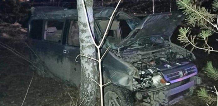 Возле памятника Шишкову разбилась Honda, водитель погиб