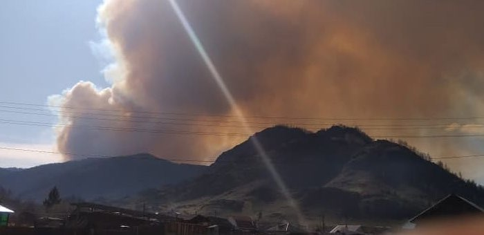 Сборщиков ореха заблокировал лесной пожар на горе возле Шашикмана