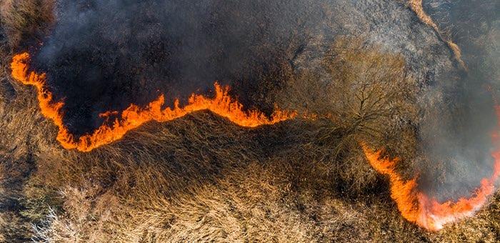 В Онгудайском районе тушат природные пожары