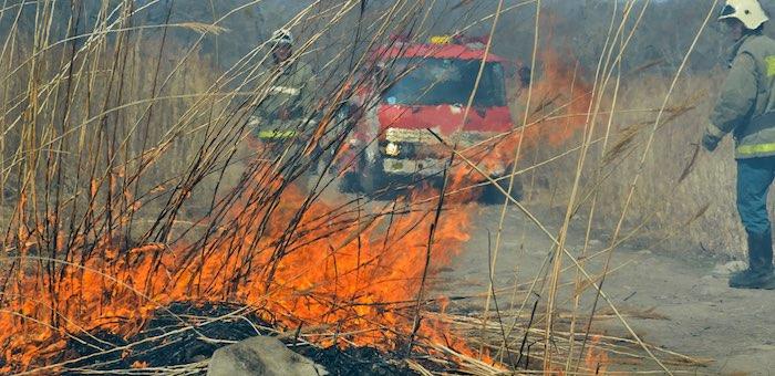 На территории республики вводится особый противопожарный режим