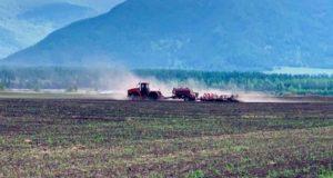 Посевные работы идут в Республике Алтай