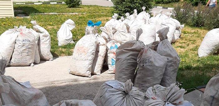 2 тонны изъятого у браконьеров «золотого корня» переданы в собственность государства