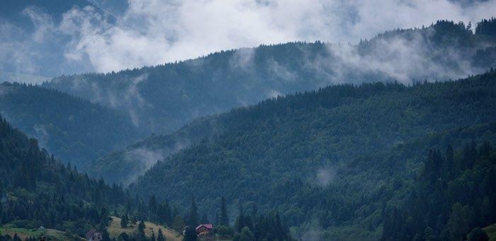 В ближайшие дни на Алтае ожидаются дожди и грозы